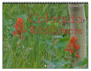 Colorado Wildflowers Vol 1 Calendar