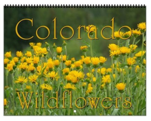 Colorado Wildflowers Vol 2 Calendar