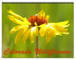 Colorado Wildflowers Vol 3 Calendar
